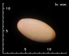 Pantozol 20 mg