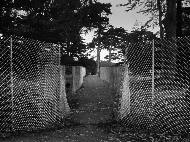 Fencing at 34th and Lincoln in Golden Gate Park for Outside Lands Festival (2012)
