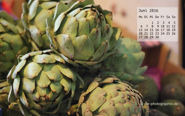 artischocke_juni_kalender_die-photographin