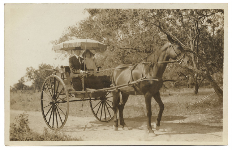 [Young couple sitting in horse-drawn carriage] | Title: [You… | Flickr
