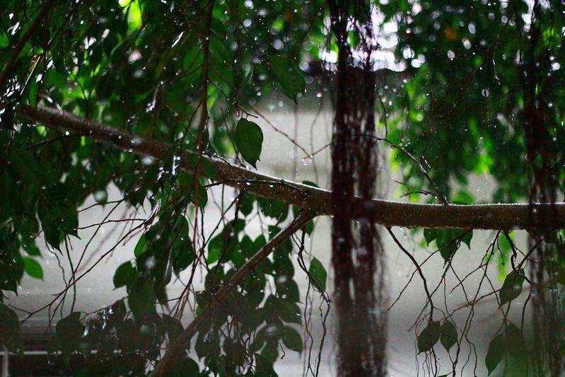 chuva 001