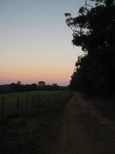 sunset australia bushwalking nsw newsouthwales welby southernhighlands boxvalewalkingtrack