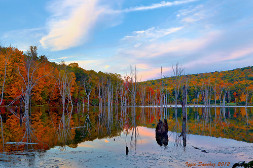 blue autumn trees sunset sky lake fall colors clouds newjersey relfections