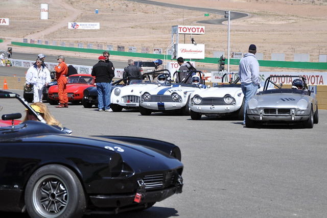 Triumph grid