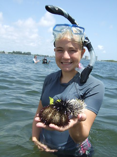 Elissa with 3 species of sea urchins | by AdventureMIke.com