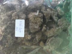 Cám dừa (Copra meal) PhuThinhCo