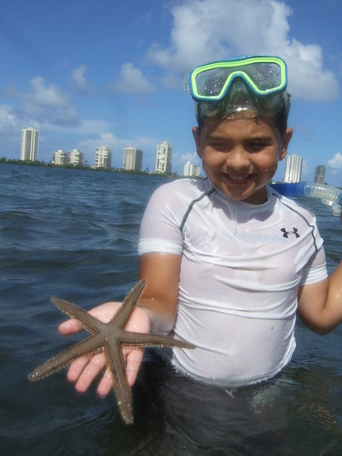 Brandon finds another beaded starfish. | by AdventureMIke.com