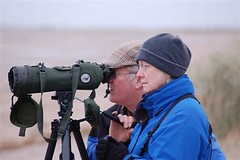 RW and P - Titchwell seawatch