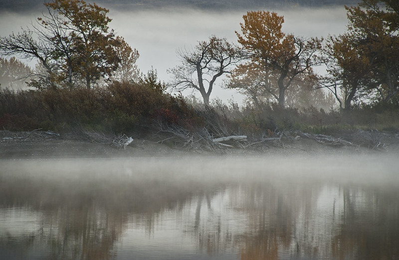 Fog Lake