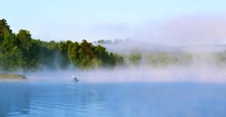 Kayaking at Dawn | by Amandaclicks