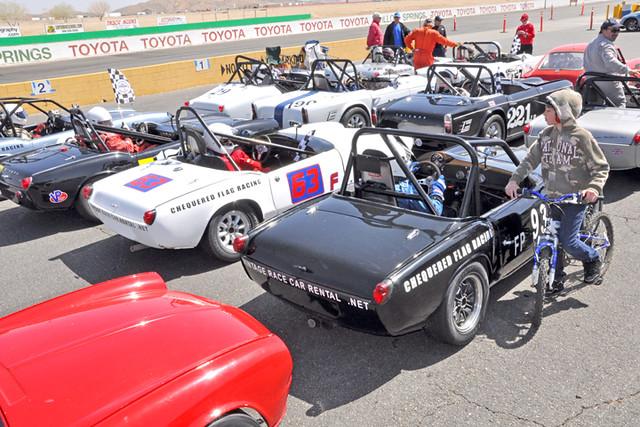 Triumph grid 12