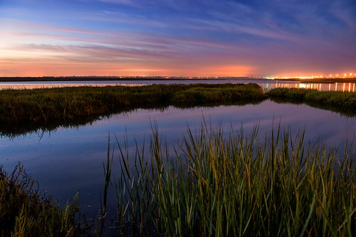 california longexposure color water sunrise coast nikon wetlands marsh wetland 2012 d800
