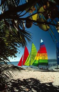 Hobie Cat sailboats on Smathers Beach: Key West, Florida