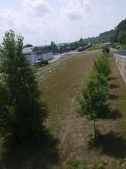 火, 2012-07-31 12:36 - サイクリングロード脇