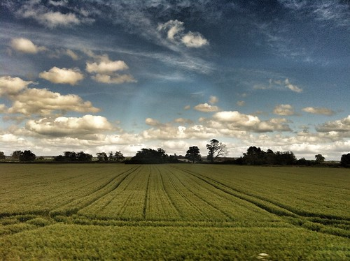 A cross the green field, past the line of trees | by Broo_am (Andy B)