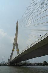 Bangkok : Rama VIII Bridge