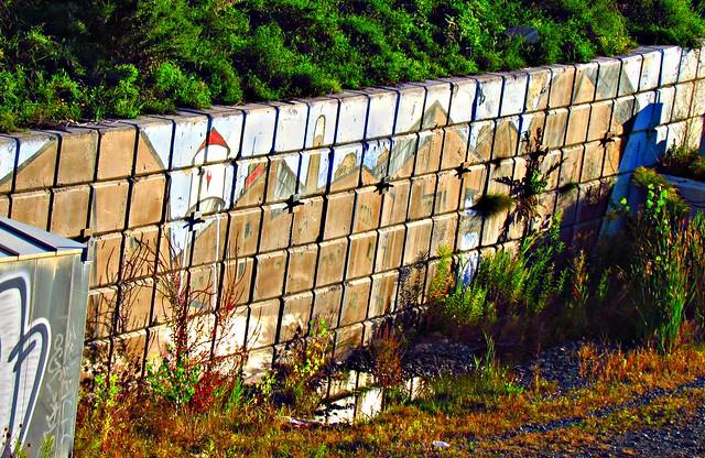 Lakeshore Rail Corridor Mural, Toronto, ON