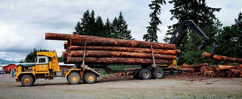 canada truck pacific britishcolumbia transport can semi vancouverisland transportation logger portalberni semitrailer landtransportation loggingtruck heavyhaul