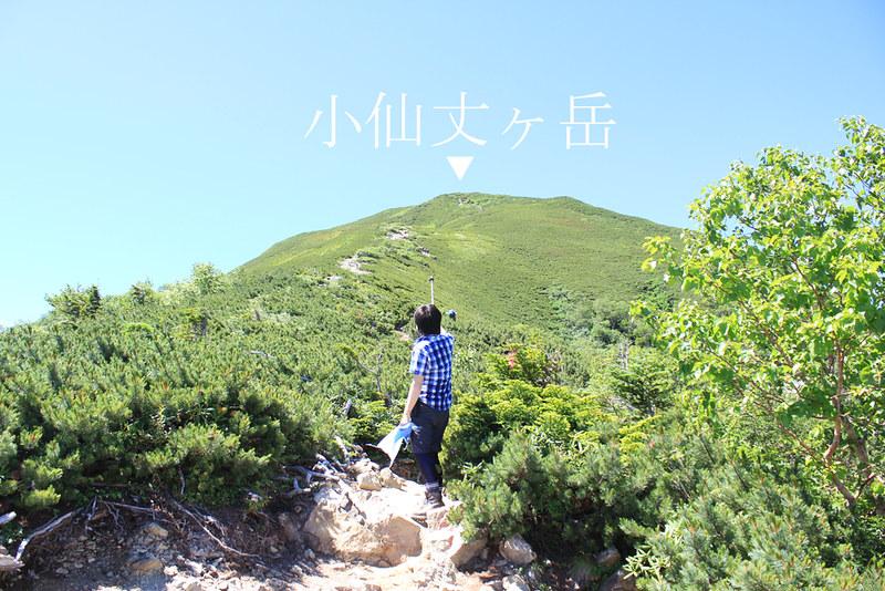 仙丈ヶ岳_25