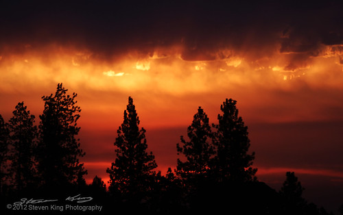 pink trees sky orange sun storm pine clouds sunrise canon fire purple smoke
