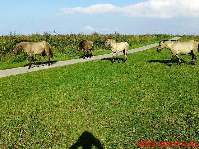 2015-10-09 Test wandeling 26 Km Oostvaarders  (14)