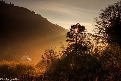 sun sunrise germany landscape deutschland thüringen thuringia sonne sonnenaufgang landschaften thüringerwald oberschönau thurigianforest
