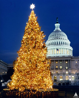1996 U.S. Capitol Christmas Tree | by USCapitol