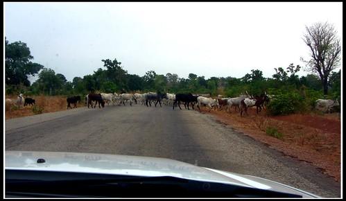 nigeria trafficjam