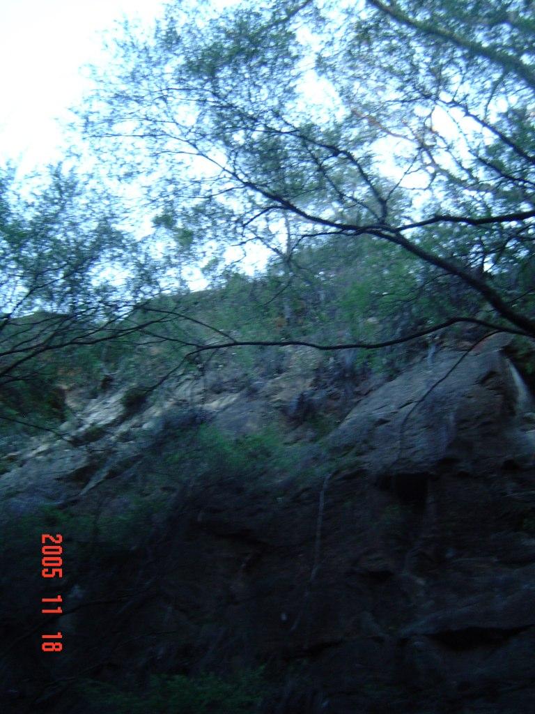 PER 051118 Wentworth Falls Old Cutting 004 by 42219
