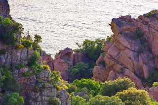 Corse - les Calanches 116   by paspog