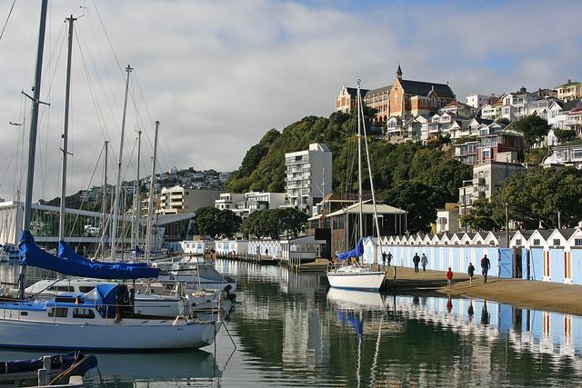 Wellington winter's morning