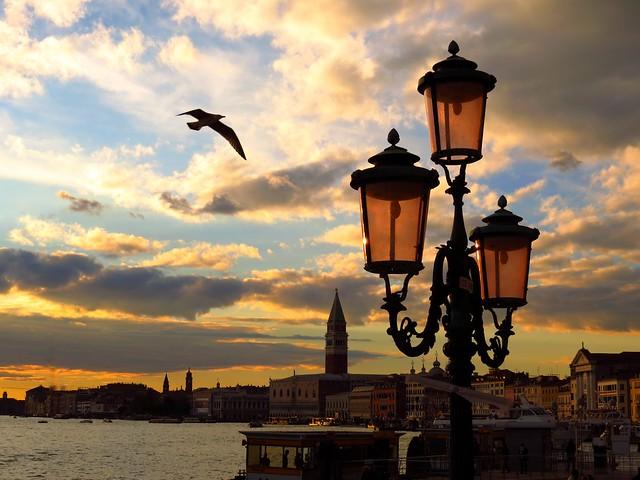 sunset, lanterns and seagull