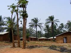Village near Baba