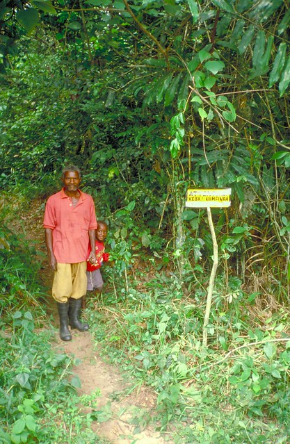 A forest reserve for bees and edible caterpillars