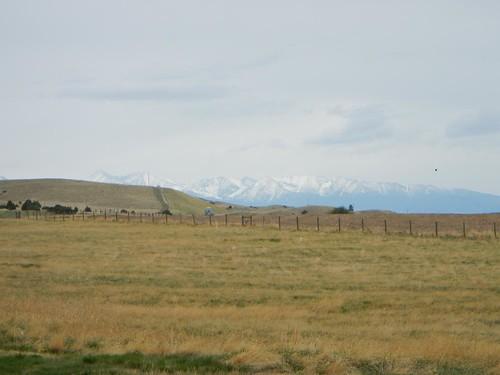 montana everydayfor7weeks