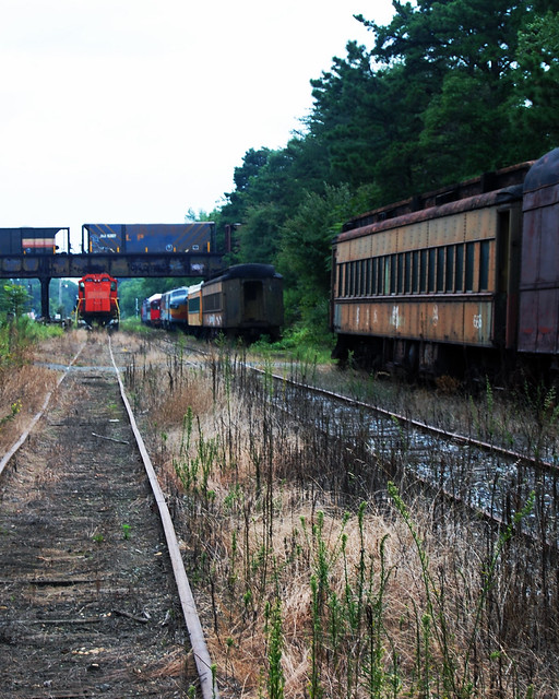 Overgrown Tracks with Train at Winslow Junction
