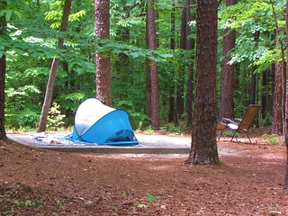 William B. Umstead State Park camping area