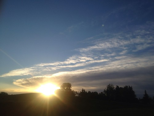 light shadow summer nature sunrise atmosphere 4g iphone davidsmith calgaryalbertacanada