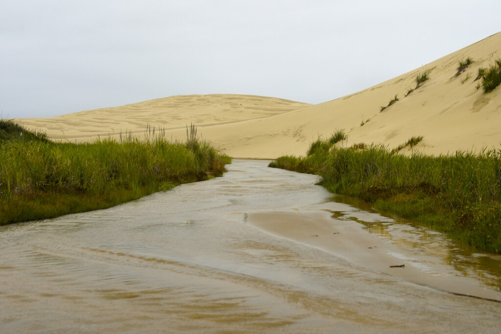 90 Mile Beach | Sand Dunes. Te Paki Stream. | itravelNZ® - New Zealand in  your pocket™ | Flickr