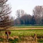 za, 24/03/2012 - 16:37 - Dakota-20120324-16-37-35-IMG_4712