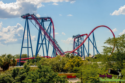 Coaster-Sheikra | by JoeyNewcombe
