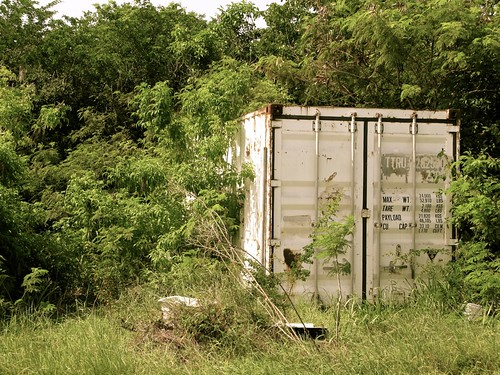 Abandoned trailer | by hollidobay