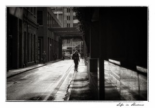 Contre jour in the city | by yoyomaoz