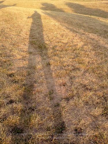 sunset shadow sun hot sunshine walking shadows profile lg potd drought poles springfieldillinois parched deadgrass trekkingpoles mattpenning mattpenningcom penningphotography lgoptimuss sprintlgoptimuss