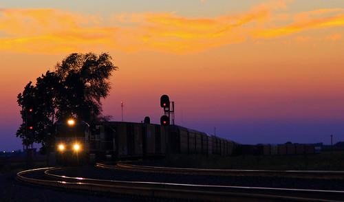 sunset arnold signal dash940cw ns9870 ns278