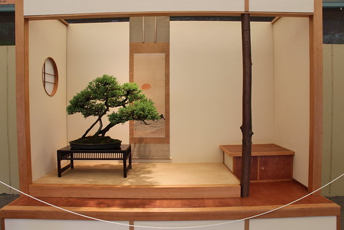 Pacific Bonsai Museum   by jimaster