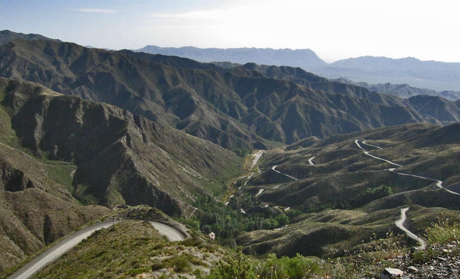 Mendoza 273