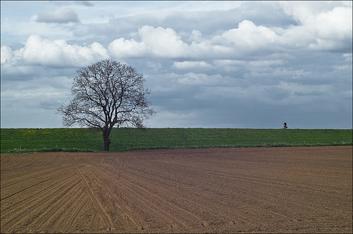 April 23rd - Lonely Cyclist | by Rense Haveman
