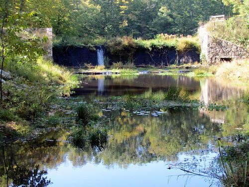 statepark nature outdoor va pocahontas