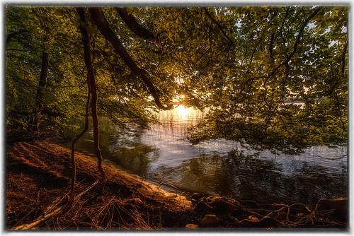 sunset water nikon sweden sp 28 mm tamron vatten f28 svergie solnedgång kungsbacka 1530 naturreservat d810 bokskog lygnen 150300 tamronsp1530mmf28 tamronsp1530mmf28divcusd tamronsp1530mmf28diusd tamronsp1530mmf28usd tamronsp1530mmf28vc tamron1530mmf28